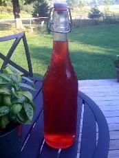 Rhubarb Vodka