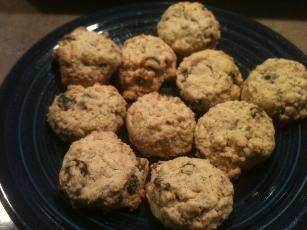 Neeces Delicious Low Carb High Fiber Oatmeal Cookies