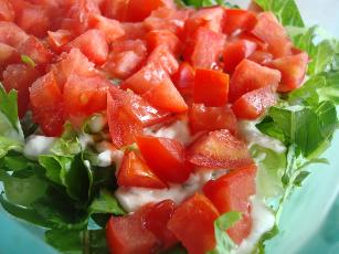 Most Awesome Blt Dip