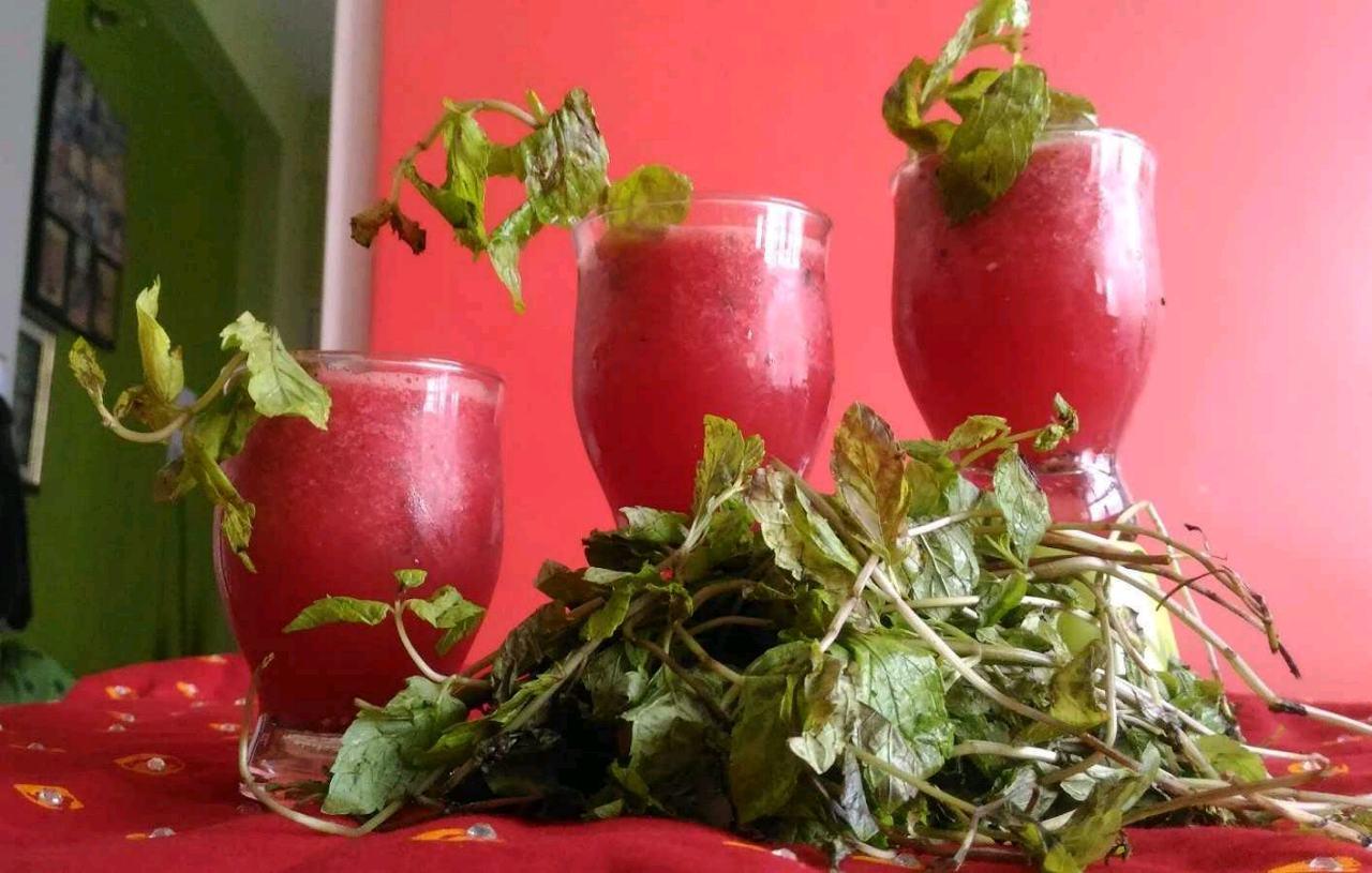 Watermelon Sharbat