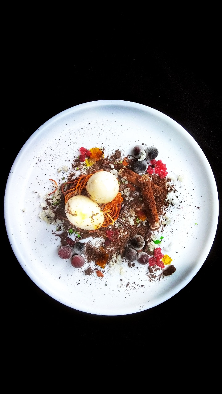 The edible bird's nest representing coconut milk pudding, and grape gelled choco tree logs: