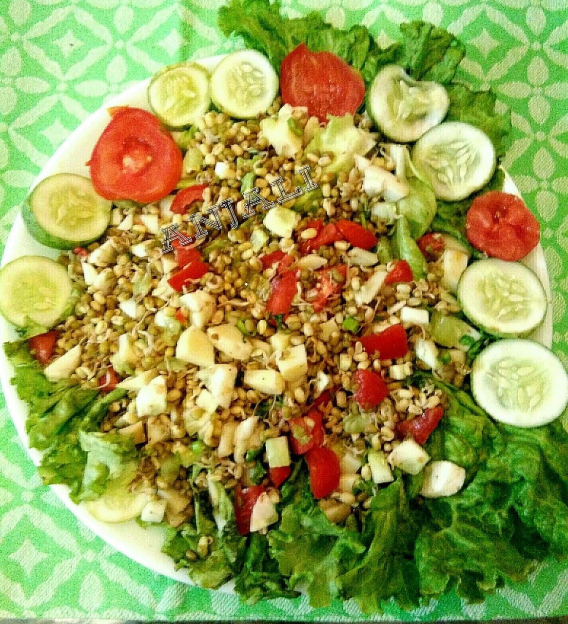Crunchy moong Sprouts mix  Salad