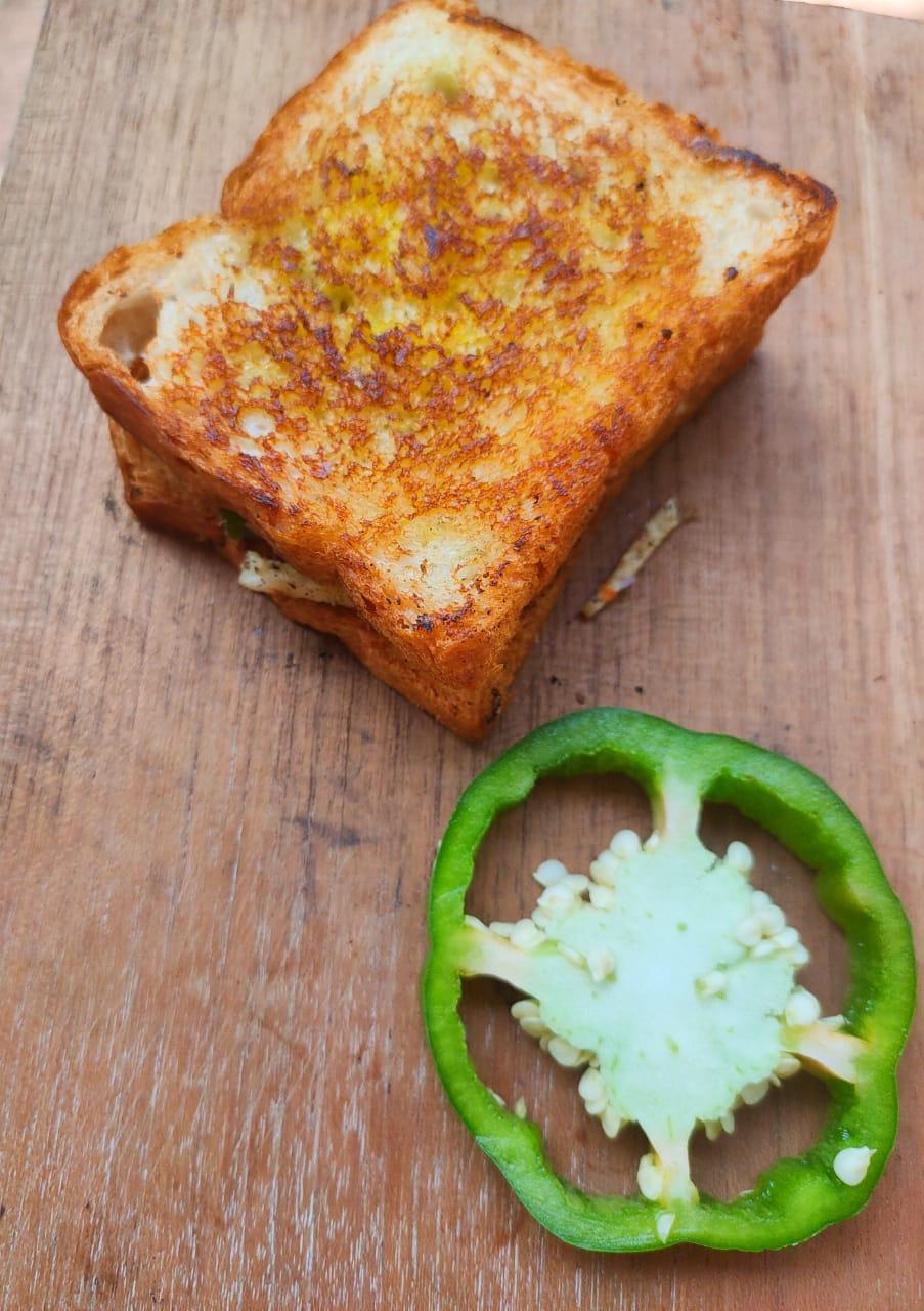 Cheese capsicum sandwich