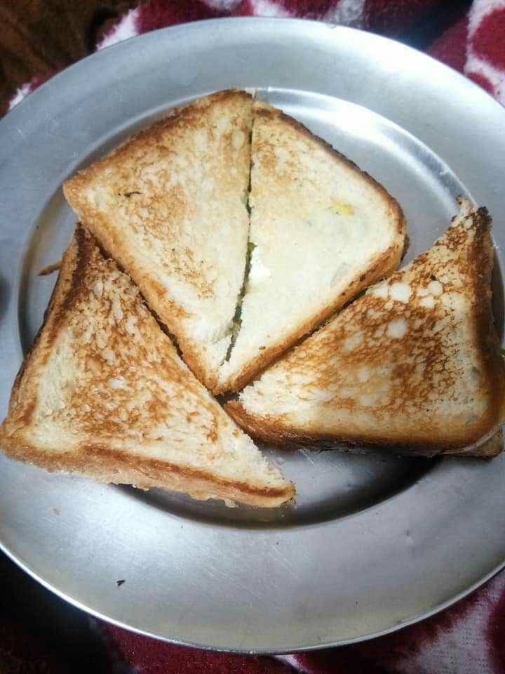 Veggies Grilled Sandwich